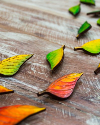 CEDAR Leaves on the Table